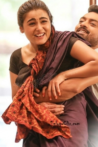 Shalini Pandey in Saree 118 Movie