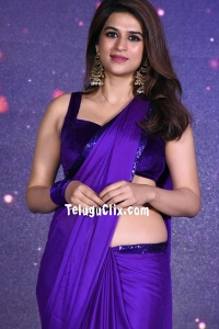 Shraddha Das in Saree HD Photos