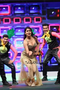 Shriya Dance Perfomance at Siima Awards 2019
