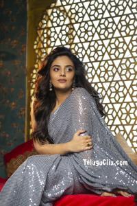 Sree Mukhi in Saree HD