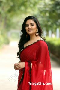 Sree Mukhi in Saree HD images