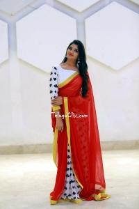 Syamala Saree Pics