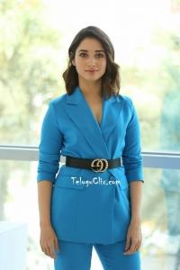 Tamannaah at F2 Success Meet
