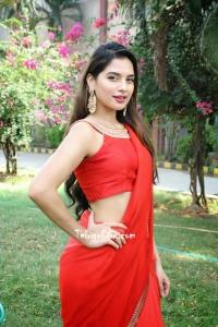 Tanya Hope in Saree HD Photos