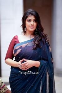 Varalaxmi Sarathkumar in Saree HD Photos